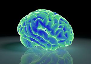 脳から治す早漏改善法