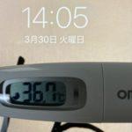 3月30日(火)の検温結果
