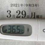 3月29日(月)の検温結果