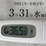 3月31日(水)の検温結果