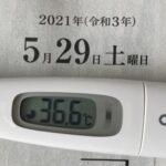 5月29日(土)の検温結果