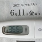 6月11日(金)の検温結果