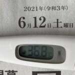 6月12日(土)の検温結果