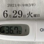 6月29日(火)の検温結果