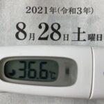 8月28日(土)の検温結果