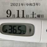 9月11日(土)の検温結果